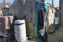 ساخت مسکن برای یک خانم بیوه