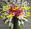 تاج و گل